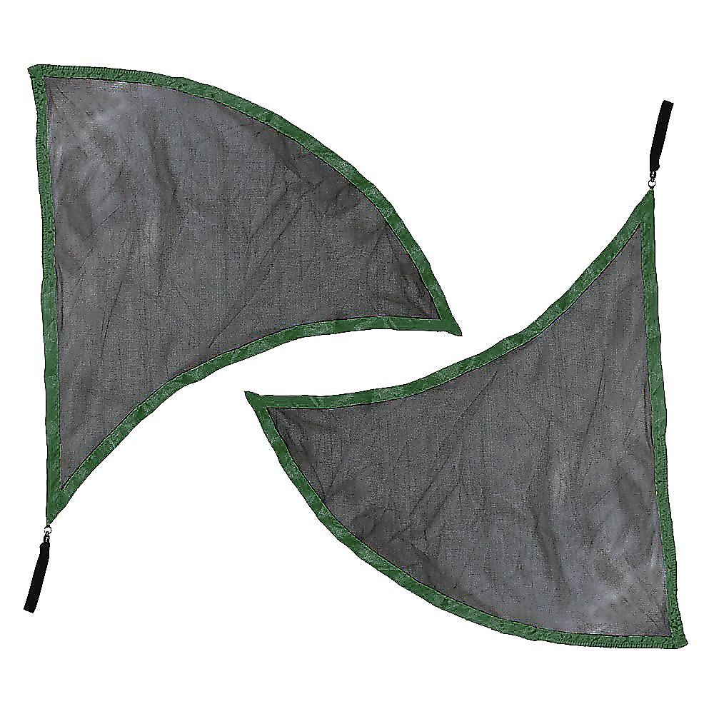 Dragon Wing Flags