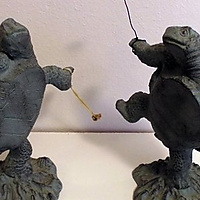Turtles love to dance with poi!