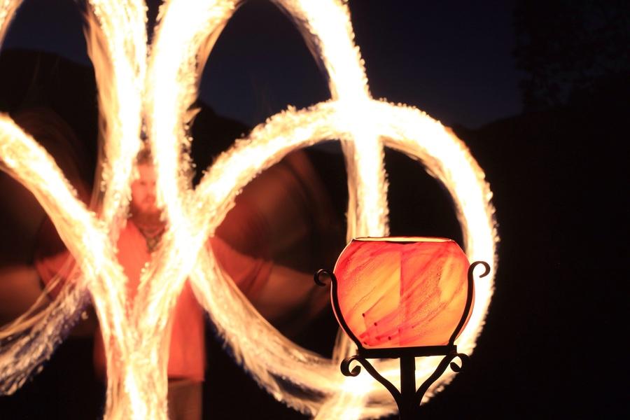 Lantern flow