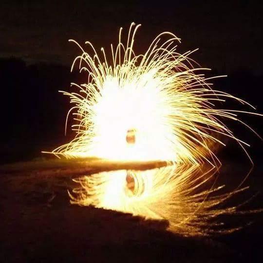 NLQP fireflies