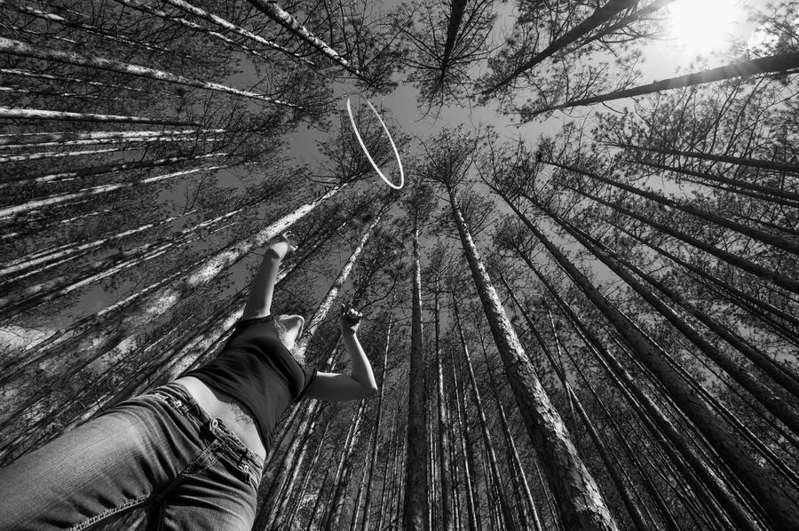 Tree Hooping