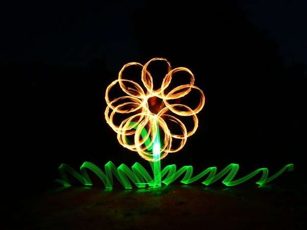 combo flower